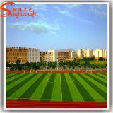 Späteste Sport- Dekoration-künstliches Pflanzenfußball-Gras
