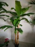 좋은 품질 Yyy 바나나 Tree2의 인공적인 플랜트 바나나 나무