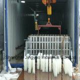 Блок льда делая машины для завода по обработке еды рыб