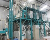 50t Maize Flour Mill Machine
