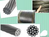 Fornecedor de China! Fios de aço galvanizados, fios de aço encalhados para ACSR