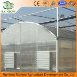 Invernadero plástico ULTRAVIOLETA protegido ULTRAVIOLETA multi