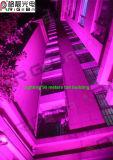 La lumière d'étape de PARITÉ de RGBWA la plus neuve 7X25W DEL pour l'éclairage extérieur