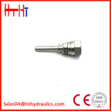Conexiones de mangueras hidráulicas embutidos rectos con una muestra gratis20611 20611-T