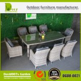 Rattan Wicker Patio Furniture Garden Set de mesa de jantar Dgd8-0021