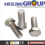 Acier inoxydable / acier au carbone Standard / Non-Standard / Customized Bolt Auto Fastener