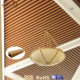 판매를 위한 실내 디자인된 내화성 PVC 천장