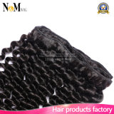 100% sans traitement couleur naturelle Virgin Kinky Curly Brazilian Hair