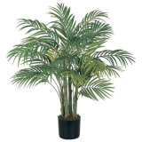 최신 판매 Aritificial 환경 친절한 물자 Chrysalidocarpus Lutesens Bonsai