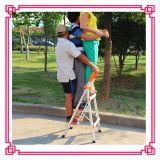 De Kruk van de Stap van de Ladder van het huishouden met Leuning