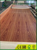 Fancy Plywood Laminé Brésil Rose Wood