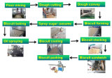 Pianta di fabbricazione del biscotto Kh-600