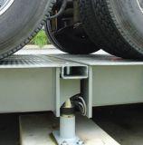 Autotruck/모터 트럭/모터 화물 자동차 화물 자동차 가늠자 짐 세포
