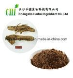 Anemarrhena Asphodeloides Auszug-Saponin-10:1 für Nahrungsmittelergänzung