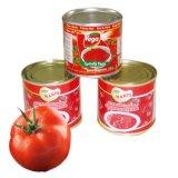 Pasta de tomate enlatada deliciosa para o macarrão 210g