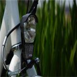 20 ' بوصة حدث تقليديّ يطوي درّاجة كهربائيّة