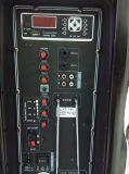 Altoparlante ricaricabile portatile di Feiyang/Temeisheng Bluetooth--SL17