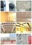 Panneau de plafond faux en aluminium de matériaux de construction pour la décoration de mur