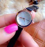 La marca de fábrica resistente de agua de la correa de la joyería de las mujeres de señora reloj mira el reloj de la muchacha