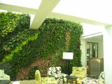 Preço Econômico Verisimilitude Green Wall