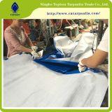 Coche de alta calidad de la cubierta de plástico de HDPE baratos&& LONA lona Camping