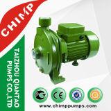 Bomba de água centrífuga de bronze da capacidade elevada do impulsor do fio de cobre de Cpm130 0.5HP