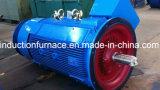 precio de fábrica Grande trifásico asíncrono de jaula de ardilla Motor AC de inducción
