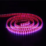 60LED SMD5060 IP68/M de tira flexible de alta potencia