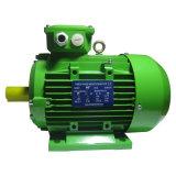 高性能Ie2シリーズ電動機の産業エンジンのアルミニウムハウジング