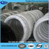 ASTM una barra rotonda d'acciaio delle 1566 molle