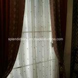 La tela Windows ciega las persianas caseras de la cortina