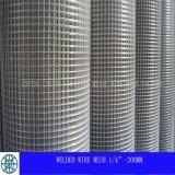 Maillage galvanisé galvanisé (HP-001)