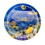 Creatveの魚の泡壁に取り付けられたアクリルの魚ボール