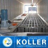 Машина льда блока Koller 10t Containerized с системой крана