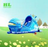 Pescado azul grande Parque de Atracciones Inflatablepirate barco castillo inflable