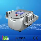 Gordura de Lipolaser dos diodos que Slimming 88 lâmpadas do laser com 100MW