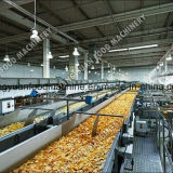 Chips de pommes de terre de la machine automatique de la friture Friture Machine