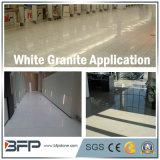 Importierte weiße Granit-Fußboden-Fliese für elegante Innenbodenbelag-Dekoration