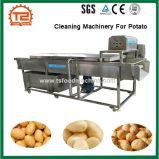 감자를 위한 식물성 세탁기 청소 기계장치