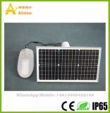 20W-80W Semi-Separated/Integrado Rua Solar Luz LED de exterior