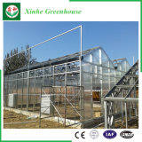 Van de bloem/van het Fruit/het Groeien van Groenten de Groene Huizen van het PC- Blad met het Systeem van het Zonnescherm