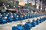 alternatore del generatore di CA della spazzola della STC della st di 3kw 5kw 10kw 12kw 15kw 20kw 30kw 40kw 50kw