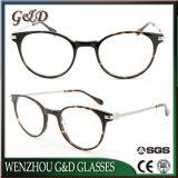 Modelo de moda el espectáculo de acetato de nuevos productos Marco óptica gafas Gafas