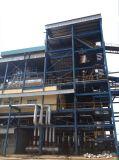De horizontale Boiler van de Biomassa van de Bagasse van het Suikerriet van de Buis van het Water Automatische