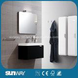 Governo di stanza da bagno europeo moderno fissato al muro di disegno con lo specchio