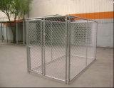 Grande piscine en acier de la cage de chien de maillon de chaîne/Chenil avec toit