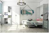 2016 SepsionホットオフィスデスクFjは-22とマーフィーベッド、目に見えない壁のベッドを販売