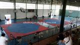 Циновка для карате, Taekwondo боевых искусств