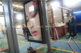 Adv (HS-BS-E-028)를 위한 Light Box를 가진 버스 Shelter