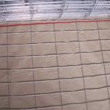 """1X20m оцинкованной сварной сетки (сетка размер: 1/4"""" до 2"""")"""
